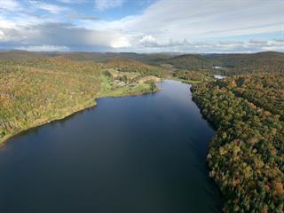 Terrain à vendre à Saint-Faustin/Lac-Carré, Laurentides, Chemin du Bord-de-l'Eau, 22582420 - Centris.ca
