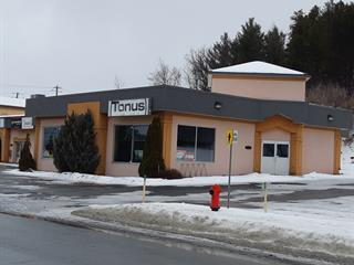 Commercial unit for rent in Saint-Georges, Chaudière-Appalaches, 10965, 2e Avenue, 9642958 - Centris.ca