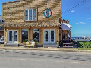 Duplex for sale in Sainte-Anne-des-Monts, Gaspésie/Îles-de-la-Madeleine, 117 - 119, 1re Avenue Ouest, 24333442 - Centris.ca