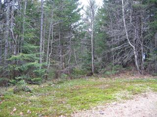 Lot for sale in Sainte-Christine-d'Auvergne, Capitale-Nationale, 12, 4e av. du Domaine-Alouette, 24125093 - Centris.ca