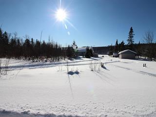 House for sale in Petit-Saguenay, Saguenay/Lac-Saint-Jean, 109, Chemin du Lac-à-David, 9170833 - Centris.ca