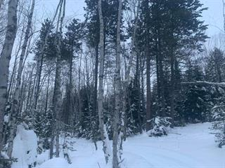 Lot for sale in La Malbaie, Capitale-Nationale, Rang  Saint-Joseph, 10450309 - Centris.ca