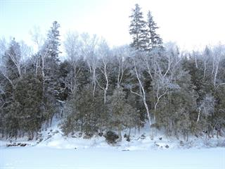 Lot for sale in Saint-Aimé-du-Lac-des-Îles, Laurentides, Chemin de la Perdriole, 18292031 - Centris.ca
