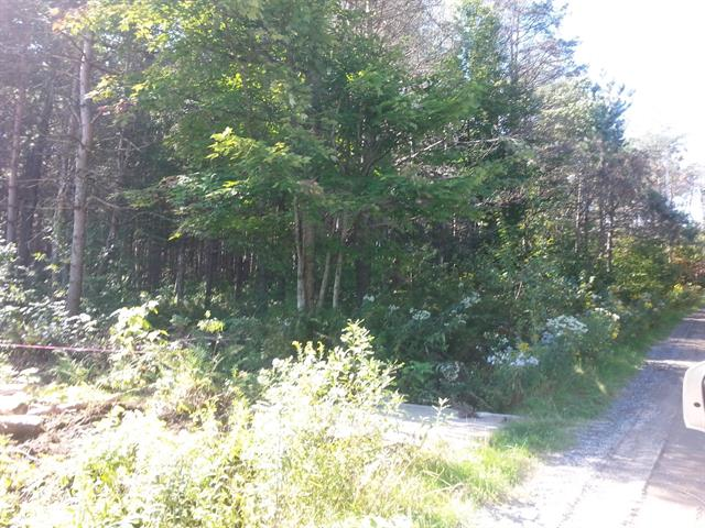 Lot for sale in Asbestos, Estrie, 507-1, Rue  Charland, 17328206 - Centris.ca