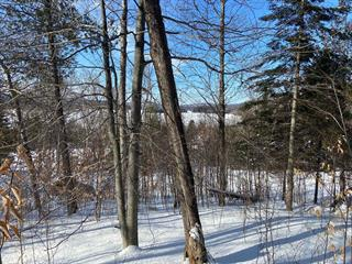 Lot for sale in Mont-Tremblant, Laurentides, Chemin  Wheeler, 26302354 - Centris.ca