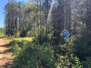 Terrain à vendre à Amherst, Laurentides, Chemin  Lavoie, 13760142 - Centris.ca