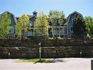 Condo / Appartement à louer à Mont-Tremblant, Laurentides, 110, Chemin des Quatre-Sommets, app. 1, 24752693 - Centris.ca