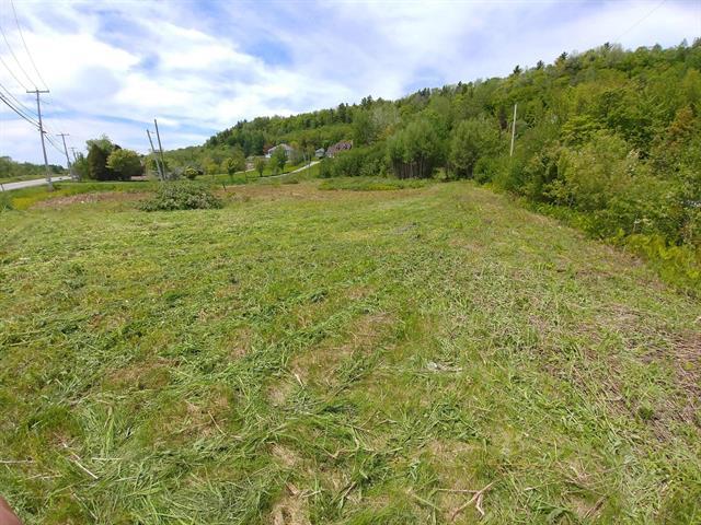 Terrain à vendre à Cap-Santé, Capitale-Nationale, Route  138, 28178130 - Centris.ca