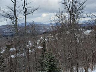 Terrain à vendre à Saint-Faustin/Lac-Carré, Laurentides, Rue du Plateau, 22455224 - Centris.ca