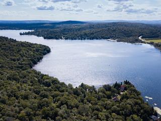 Terrain à vendre à Lac-Sergent, Capitale-Nationale, Chemin  Vieux, 27605951 - Centris.ca