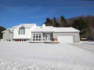 Maison à vendre à Saint-André-Avellin, Outaouais, 52, Rue  Bélisle, 11454679 - Centris.ca