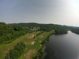Lot for sale in Saint-Faustin/Lac-Carré, Laurentides, Chemin du Bord-de-l'Eau, 19003006 - Centris.ca