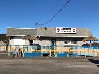 Bâtisse commerciale à vendre à Saint-Fabien, Bas-Saint-Laurent, 100, Route  132 Est, 24743683 - Centris.ca