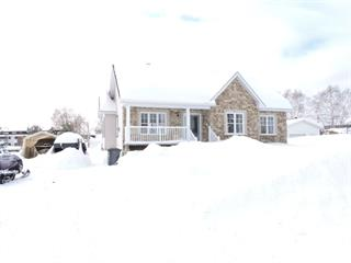 House for sale in Ferme-Neuve, Laurentides, 46, 13e Avenue, 22668201 - Centris.ca