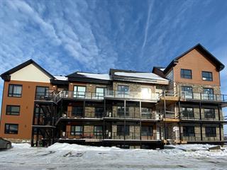 Condo / Apartment for rent in Saint-Ferdinand, Centre-du-Québec, 1035, Rue  Principale, apt. 500, 16095435 - Centris.ca