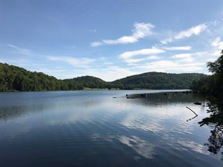 Lot for sale in Saint-Faustin/Lac-Carré, Laurentides, Chemin du Bord-de-l'Eau, 21974893 - Centris.ca