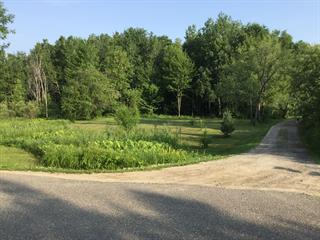 Lot for sale in Plaisance, Outaouais, 2000, Chemin de la Grande-Presqu'île, 27431005 - Centris.ca