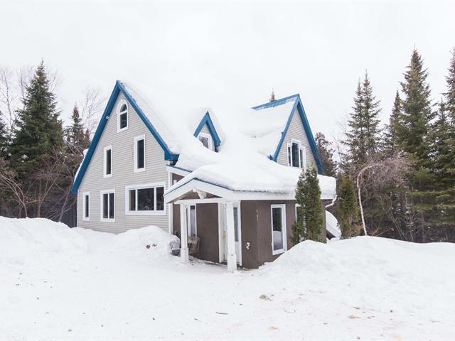 Maison à vendre à Saint-Marc-de-Figuery, Abitibi-Témiscamingue, 283, Chemin des Riverains, 14503790 - Centris.ca