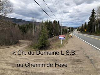 Lot for sale in Saint-Donat (Lanaudière), Lanaudière, Chemin du Domaine-L.-S.-B., 13477074 - Centris.ca