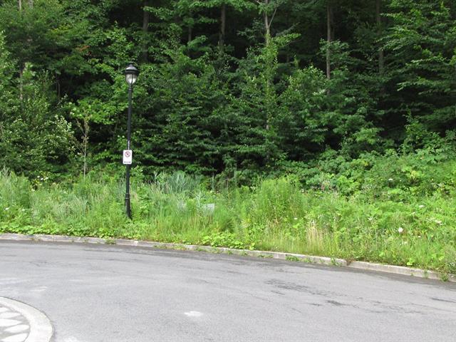 Lot for sale in Mont-Saint-Hilaire, Montérégie, Rue du Sommet, 22860125 - Centris.ca
