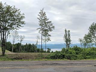 Terrain à vendre à Saint-Félix-d'Otis, Saguenay/Lac-Saint-Jean, Vieux-Chemin, 25569203 - Centris.ca