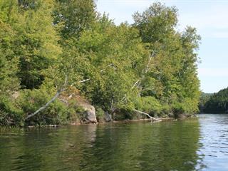 Terrain à vendre à Boileau, Outaouais, Impasse  Benoit, 28648697 - Centris.ca