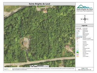 Terrain à vendre à Sainte-Brigitte-de-Laval, Capitale-Nationale, 51, Rue du Centre, 28867734 - Centris.ca