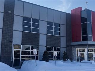 Bâtisse industrielle à vendre à Laval (Chomedey), Laval, 4625, Rue  Louis-B.-Mayer, 10221030 - Centris.ca
