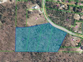 Terrain à vendre à Amherst, Laurentides, Chemin du Lac-Cameron, 16331892 - Centris.ca