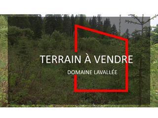 Lot for sale in Rouyn-Noranda, Abitibi-Témiscamingue, 1023, Rue  Lavallée, 18665777 - Centris.ca