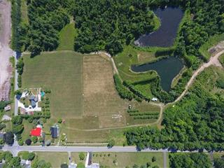 Fermette à vendre à Hemmingford - Canton, Montérégie, 144, Route  219 Sud, 17840941 - Centris.ca