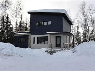 House for sale in La Corne, Abitibi-Témiscamingue, 7, Chemin  Simon-Robitaille, 15985101 - Centris.ca