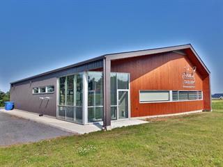 Bâtisse industrielle à vendre à Sainte-Cécile-de-Milton, Montérégie, 53, Rue  Industrielle, 27886825 - Centris.ca