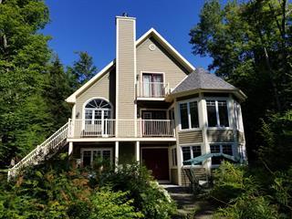 Maison à vendre à Sainte-Christine-d'Auvergne, Capitale-Nationale, 271, Chemin du Lac-Clair, 12029208 - Centris.ca