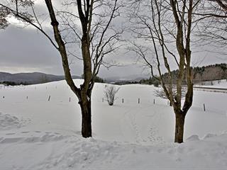 House for sale in Saint-Venant-de-Paquette, Estrie, 610, Route  253, 20522356 - Centris.ca