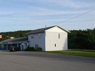 House for sale in Duhamel-Ouest, Abitibi-Témiscamingue, 263A - 265B, Route  101 Sud, 16258837 - Centris.ca