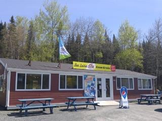 Commercial building for sale in Lac-Etchemin, Chaudière-Appalaches, 1320, Route  277, 9247565 - Centris.ca