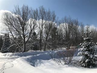 Lot for sale in Eastman, Estrie, Chemin de Mont-Bon-Plaisir, 20709747 - Centris.ca
