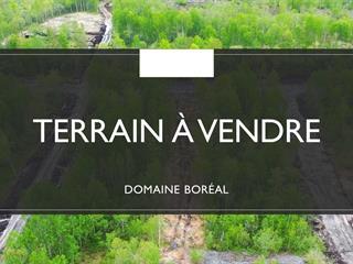 Terrain à vendre à Rouyn-Noranda, Abitibi-Témiscamingue, Rue  Montrose, 21119375 - Centris.ca