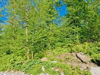 Terrain à vendre à Saint-Étienne-de-Bolton, Estrie, Rue de la Serpentine, 13799459 - Centris.ca