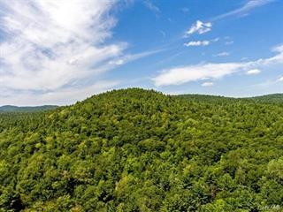 Land for sale in Waltham, Outaouais, Chemin de Chapeau-Waltham, 18359854 - Centris.ca