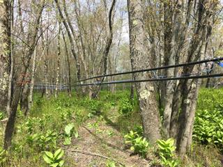 Land for sale in Irlande, Chaudière-Appalaches, Route  165, 26573327 - Centris.ca