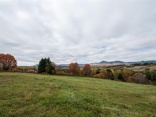 Terre à vendre à Saint-Ferréol-les-Neiges, Capitale-Nationale, 4770, Avenue  Royale, 14893491 - Centris.ca