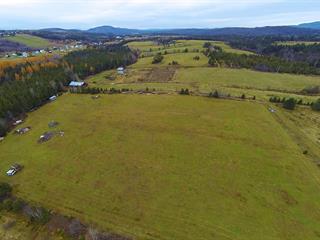 Land for sale in Saint-Ferréol-les-Neiges, Capitale-Nationale, 4770, Avenue  Royale, 14893491 - Centris.ca