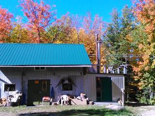 Maison à vendre à Les Lacs-du-Témiscamingue, Abitibi-Témiscamingue, 1, Rue  Non Disponible-Unavailable, 25445918 - Centris.ca