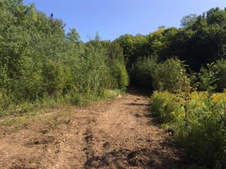 Land for sale in Brébeuf, Laurentides, Route  323, 18319818 - Centris.ca