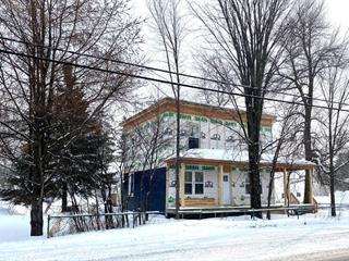 Maison à vendre à Notre-Dame-du-Nord, Abitibi-Témiscamingue, 42, Rue  Principale Nord, 20719406 - Centris.ca