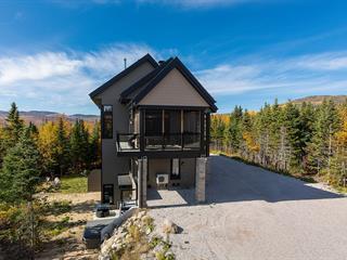 House for sale in Petite-Rivière-Saint-François, Capitale-Nationale, 6, Chemin de la Bleuetière, 28982282 - Centris.ca