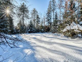 Terre à vendre à Rawdon, Lanaudière, 3918T, Rue  Queen, 13594348 - Centris.ca