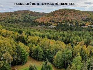 Land for sale in Sainte-Agathe-des-Monts, Laurentides, Rue du Concorde, 20253695 - Centris.ca